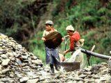 Laboral, Trabajo Infantil, Colombia, Ministerio del Trabajo, Primera Infancia