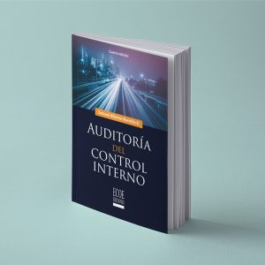Auditoria de control interno
