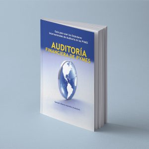 Auditoria de Pymes